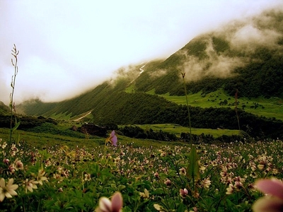 Chardham With Valley of Flower