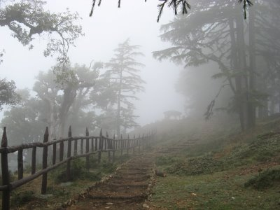 Pictursque Mussoorie with Dhanaulti